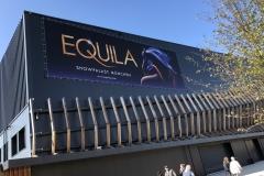Pferde hautnah: Familienausflug zum EQUILALAND in München